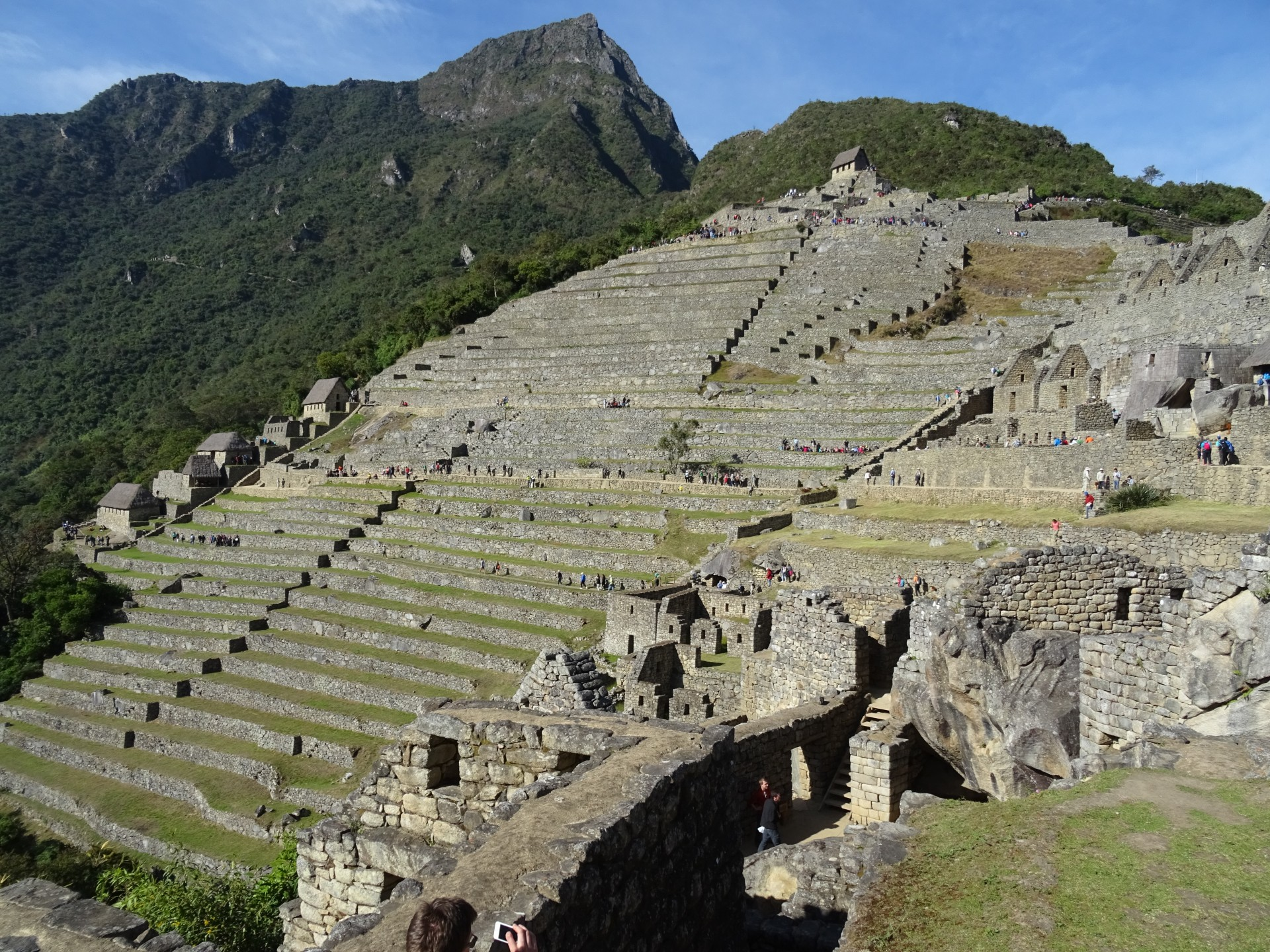 Terraces! Quite a lot, and they're bigger than they look. Montaña Machu Picchu in the background.