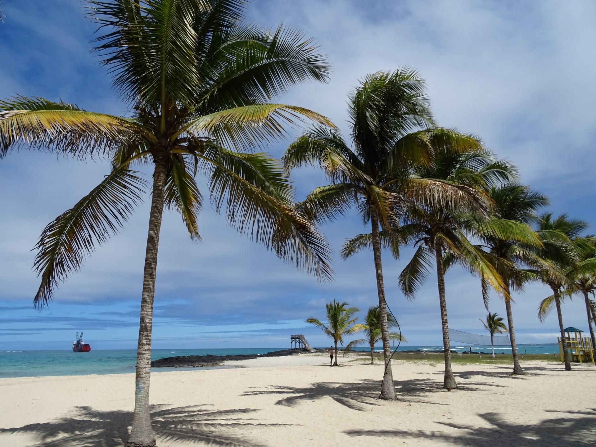 Isabela Island...